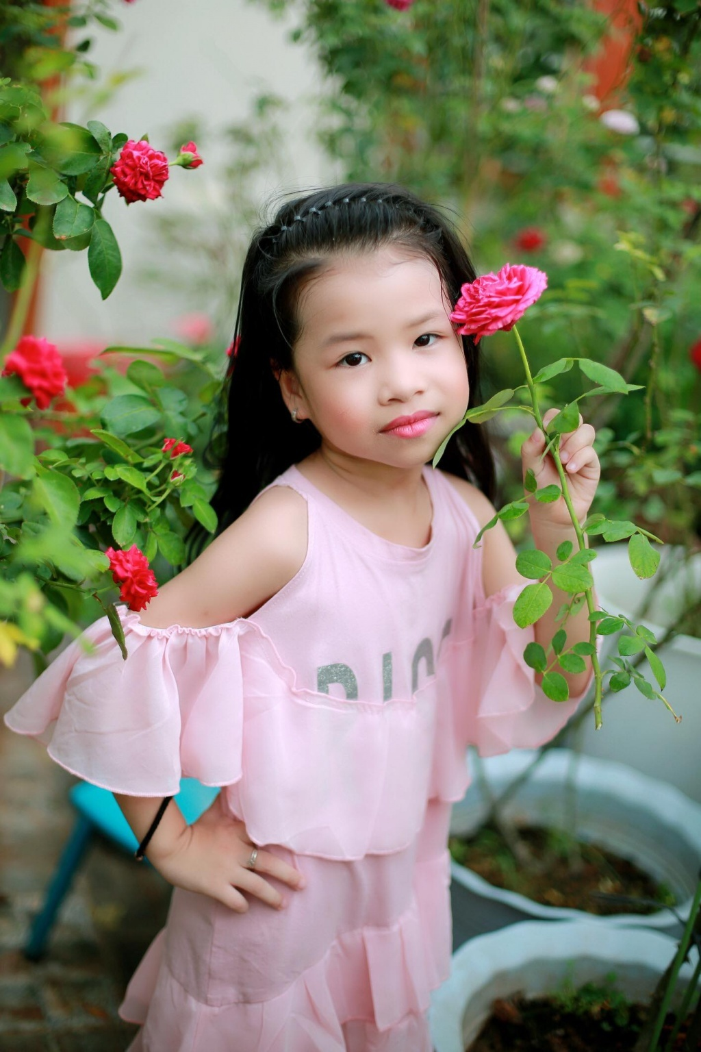 Sân thượng nhỏ chứa cả trăm gốc hồng đẹp mê hoặc của mẹ ba con ở Hà Nội-7