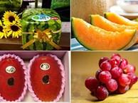 Những loại trái cây giá 'trên trời', gấp cả trăm lần quả vải thiều Shintomi 240.000 đồng/quả, có loại cả trăm triệu đồng