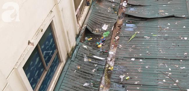 Bé gái 6 tuổi rơi từ tầng 14 chung cư xuống mái tôn lúc mẹ vắng nhà đã tử vong-1