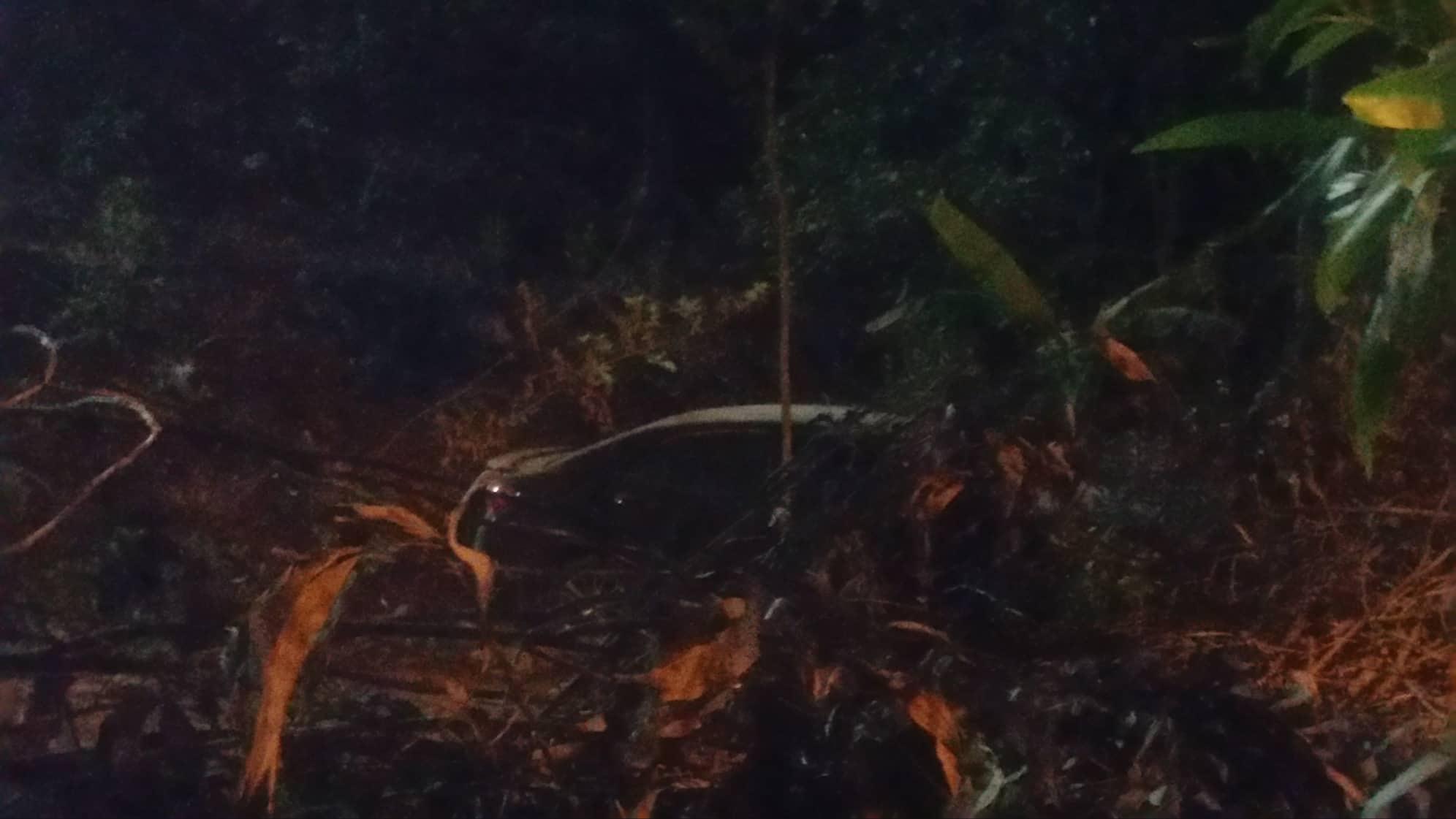 Xe Audi lao từ cầu vượt xuống vực sâu, tài xế thoát chết hy hữu-2