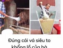 Xôn xao hình ảnh Bà Tân Vlog dùng 1 chiếc muôi vừa cho lợn ăn, vừa nấu những món