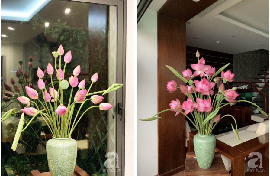 Níu giữ hương mùa hạ với những bình hoa sen đẹp dịu dàng trong tổ ấm của 3 người phụ nữ đảm ở Hà Nội-16