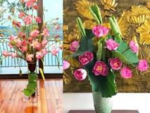 Níu giữ hương mùa hạ với những bình hoa sen đẹp dịu dàng trong tổ ấm của 3 người phụ nữ đảm ở Hà Nội