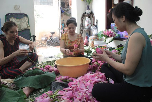 Thiên cổ đệ nhất trà sen của cụ bà U100 Hà Nội, giá 7 triệu đồng/kg-11