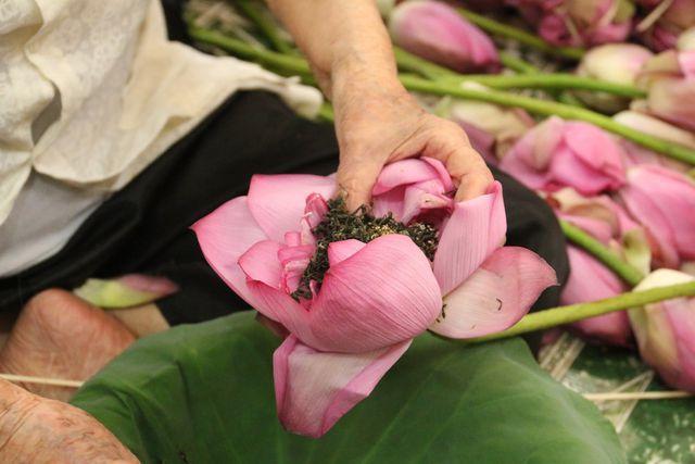 Thiên cổ đệ nhất trà sen của cụ bà U100 Hà Nội, giá 7 triệu đồng/kg-8