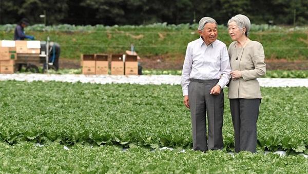 Cuộc sống của vợ chồng Nhật hoàng sau 2 tháng thoái vị, đáng lo nhất là cựu Hoàng hậu Michiko khiến người dân đứng ngồi không yên-2