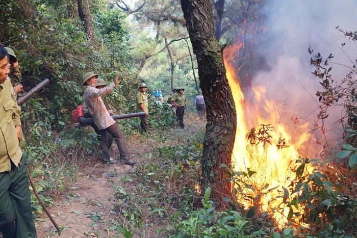 20 tiếng dầm mình trong biển lửa cứu rừng ngùn ngụt cháy ở Hà Tĩnh-5