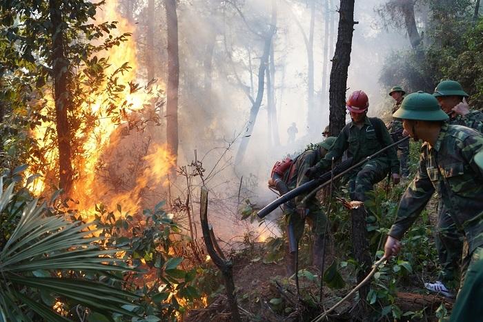 20 tiếng dầm mình trong biển lửa cứu rừng ngùn ngụt cháy ở Hà Tĩnh-6