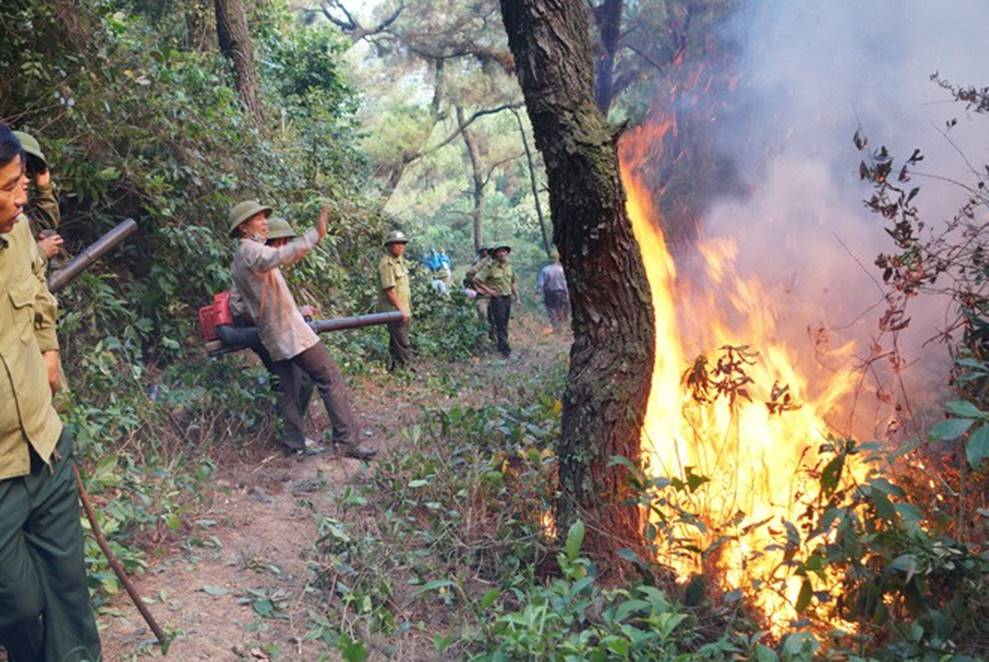 Lộ danh tính người đàn ông bị công an tạm giữ nghi gây ra vụ cháy rừng lớn nhất Hà Tĩnh-3