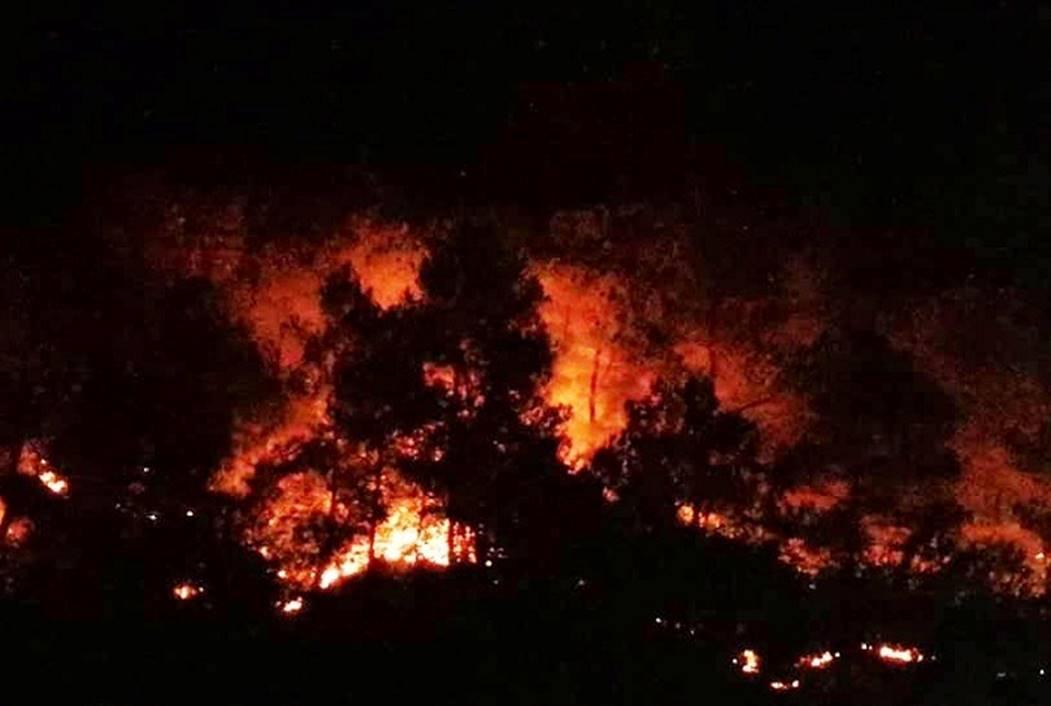 Cháy rừng lớn nhất ở Hà Tĩnh, chặn quốc lộ 1A, nghìn người dập lửa-9