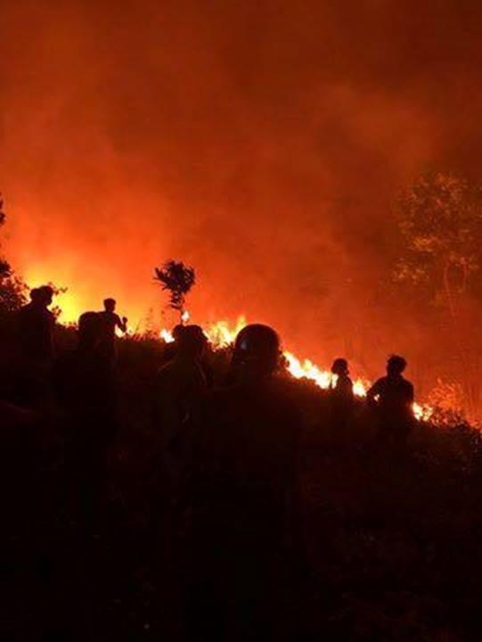 Cháy rừng lớn nhất ở Hà Tĩnh, chặn quốc lộ 1A, nghìn người dập lửa-12