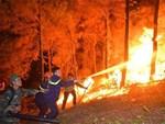 Nghệ An: Tham gia chữa cháy rừng, một phụ nữ tử vong-2