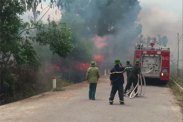 Nghệ An: Tham gia chữa cháy rừng, một phụ nữ tử vong-1
