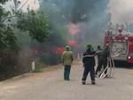 Quảng Bình lại xảy ra cháy rừng, 500 người nỗ lực vẫn chưa khống chế được lửa-3