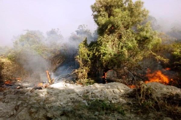 Quảng Bình lại xảy ra cháy rừng, 500 người nỗ lực vẫn chưa khống chế được lửa-1