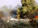 Cảnh hoang tàn ở rừng phòng hộ bị lửa thiêu 3 ngày nhìn từ trên cao-1