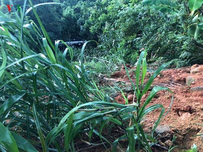Xe khách lao xuống vực sâu 30m ở Quảng Ninh, 2 người tử vong-1