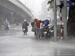 Ảnh hưởng của bão số 2, mưa giông ngã cây đè 1 người bị thương ở Hà Nội-7