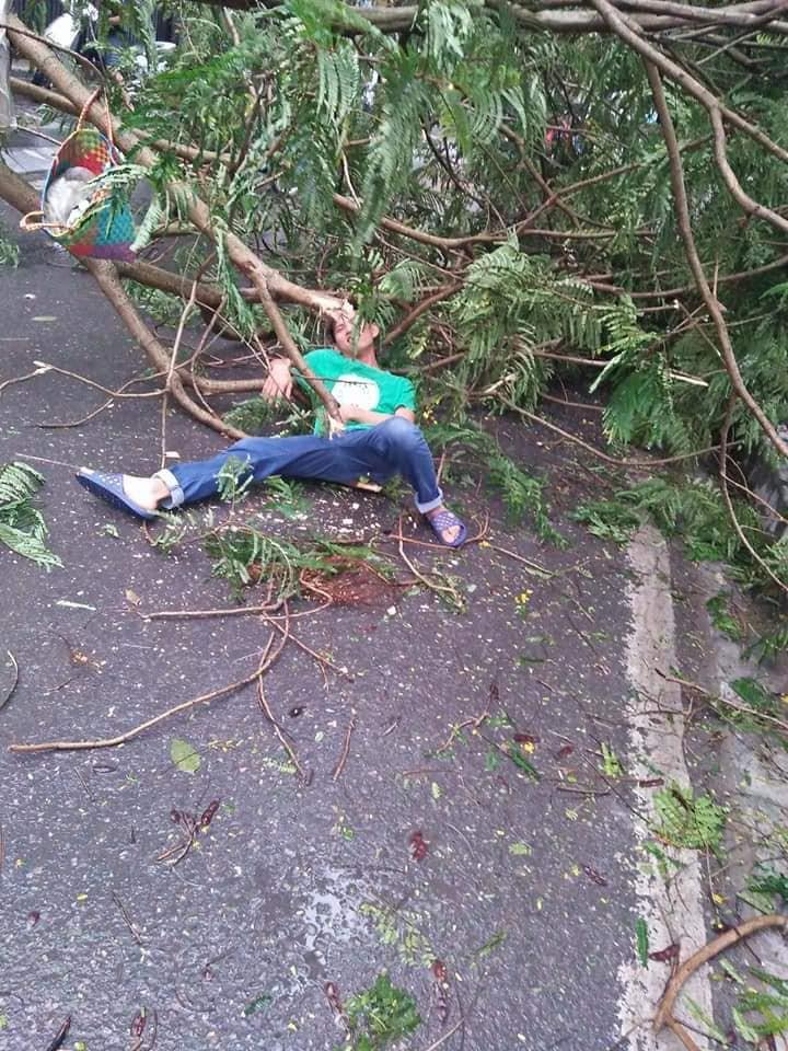 Ảnh hưởng của bão số 2, mưa giông ngã cây đè 1 người bị thương ở Hà Nội-2