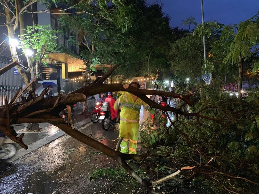 Ảnh hưởng của bão số 2, mưa giông ngã cây đè 1 người bị thương ở Hà Nội-4
