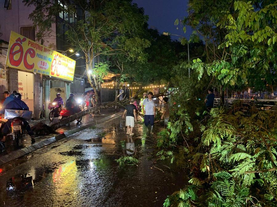 Ảnh hưởng của bão số 2, mưa giông ngã cây đè 1 người bị thương ở Hà Nội-5