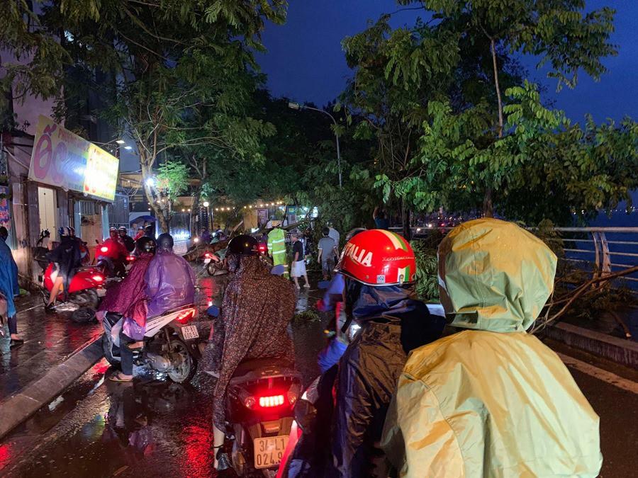 Ảnh hưởng của bão số 2, mưa giông ngã cây đè 1 người bị thương ở Hà Nội-6