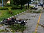 Bão số 2 giật cấp 11 đã đổ bộ vào đất liền, 2 người chết do sạt lở ở Thanh Hóa-3