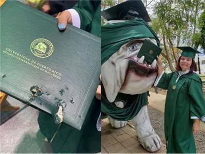 Mải mê chụp ảnh với đám bạn, nữ sinh vô ý bị chú chó Bull Anh cắn rách bằng tốt nghiệp-1