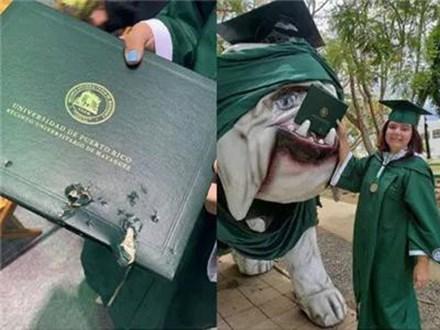 Mải mê chụp ảnh với đám bạn, nữ sinh vô ý bị chú chó Bull Anh cắn rách bằng tốt nghiệp