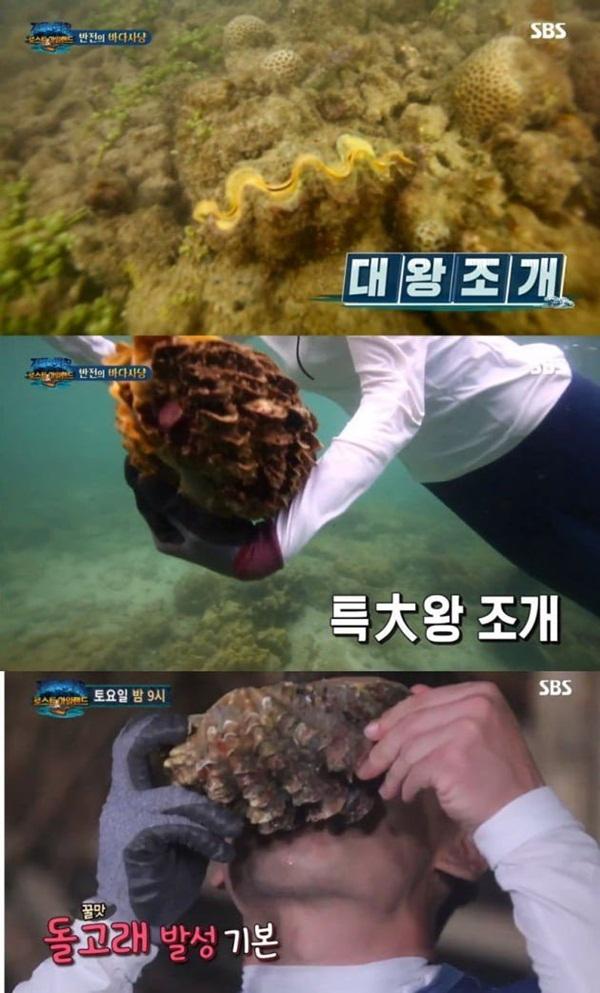 Nữ diễn viên Hàn Quốc đối diện án tù vì bắt 3 con sò tai tượng quý hiếm của Thái Lan khiến dư luận phẫn nộ-3