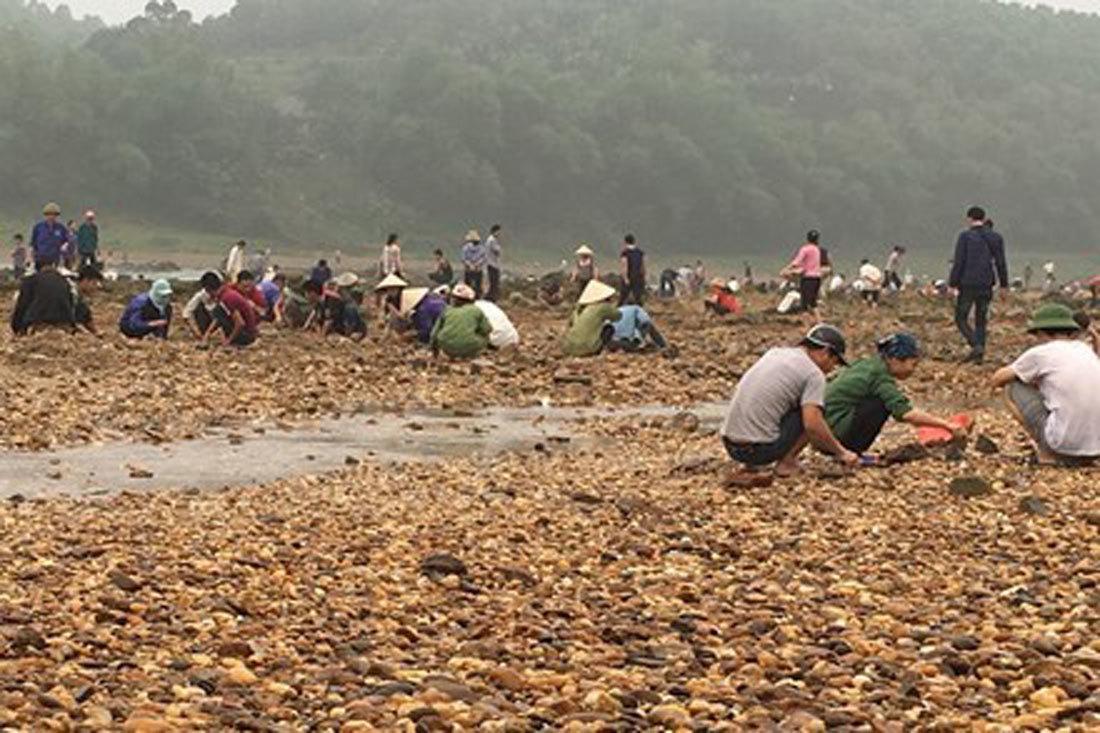 Đi rừng nhặt được viên đá quý 5 tỷ, vạn người đào núi tìm vận may-2