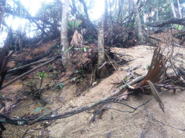 Đi rừng nhặt được viên đá quý 5 tỷ, vạn người đào núi tìm vận may-4