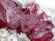 Đi rừng nhặt được viên đá quý 5 tỷ, vạn người đào núi tìm vận may