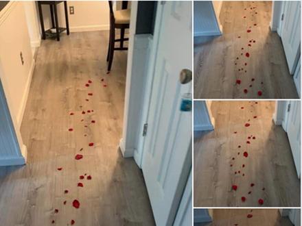 Theo dấu hoa hồng để nhận quà lãng mạn từ vợ, chồng không thốt nên lời khi nhìn thấy kết quả