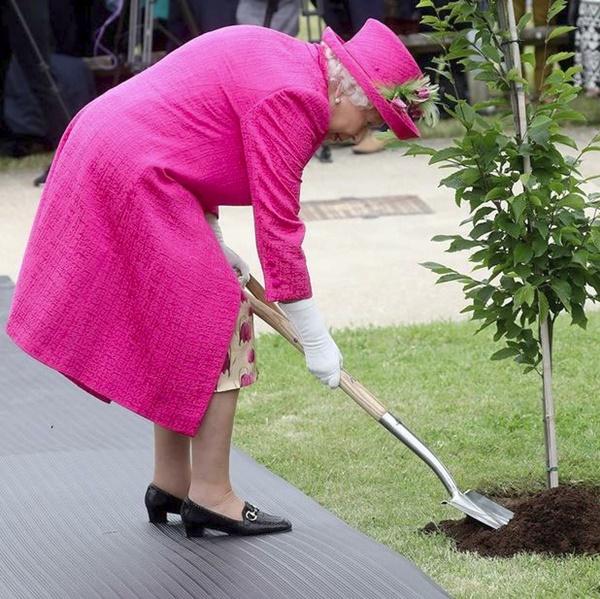 Hai khoảnh khắc khác nhau một trời một vực giữa Nữ hoàng Anh và Meghan Markle khiến nàng dâu hoàng gia phải xấu hổ ê chề-2