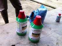 Vợ chồng trưởng trạm y tế lần lượt tự tử bằng thuốc diệt cỏ