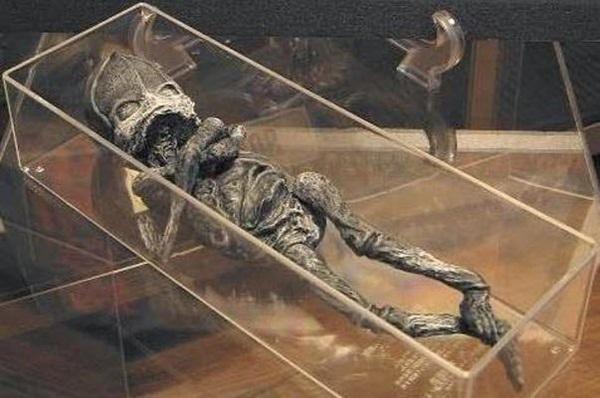 """Hé lộ thân phận thực sự về sinh vật lạ nghi là em bé ngoài hành tinh"""" mang lời nguyền chết chóc từng gây rúng động cách đây 23 năm-1"""