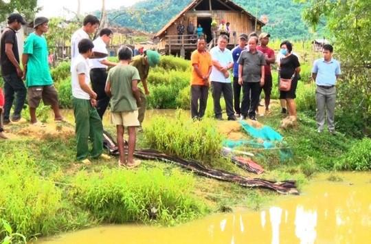 Khánh Hòa: 4 em nhỏ chết đuối thương tâm tại ao nước trước nhà-2