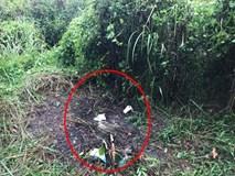 Bí ẩn bộ xương người được phát hiện trong vườn mai