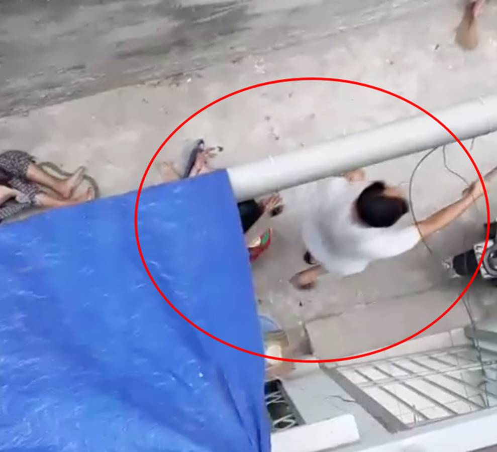 Kinh hoàng clip cụ bà ở Hà Nội bị chó cắn máu me đầm đìa, người phụ nữ cố giải cứu trong bất lực-1