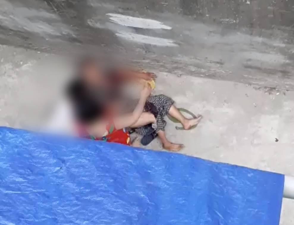 Kinh hoàng clip cụ bà ở Hà Nội bị chó cắn máu me đầm đìa, người phụ nữ cố giải cứu trong bất lực-2