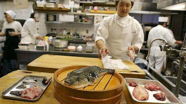 Có thể gây chết người, tại sao cá Nóc vẫn là món ăn đắt đỏ?-3