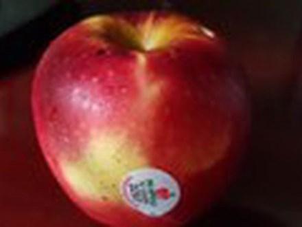 Bí mật táo ngoại để lâu không hỏng, khi rửa thẩy vỏ nhớt