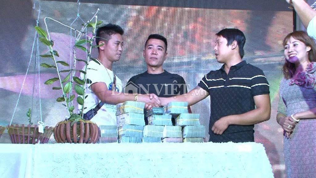 Hàng khủng Lâm Đồng: Chậu lan Giả hạc đột biến bán giá 5 tỷ đồng-1