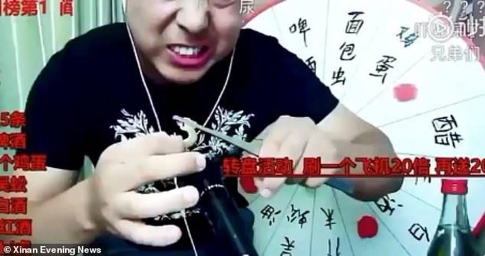 Livestream ăn tắc kè sống, rết độc, vlogger Trung Quốc mất mạng-1