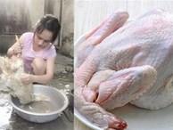 Bỏ thứ này vào nhổ lông vịt đảm bảo không còn cọng lông nào, món ăn hết mùi hôi, thơm ngon đậm vị