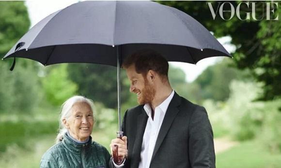 Hoàng tử Harry tuyên bố: Chỉ sinh 2 con để bảo vệ môi trường, cứu lấy hành tinh khiến cộng đồng mạng phẫn nộ-1