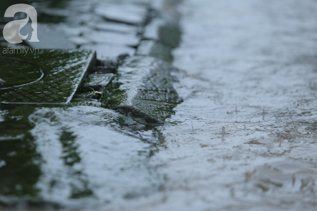 KHẨN CẤP: Bão số 3 giật cấp 12 tiến sát đất liền, Hà Nội và các tỉnh Bắc Bộ đang mưa lớn, gió lốc mạnh-12