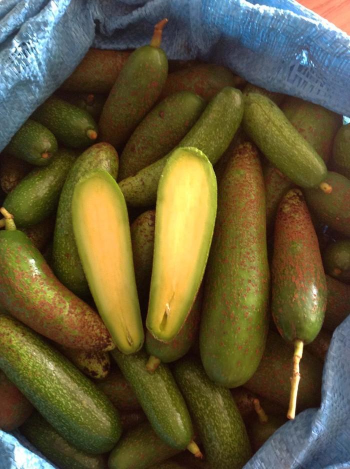 9 loại trái cây không hạt từng làm mưa làm gió cho thu lời khủng-2