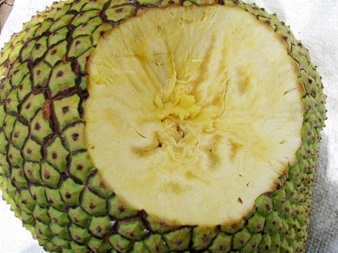 9 loại trái cây không hạt từng làm mưa làm gió cho thu lời khủng-5